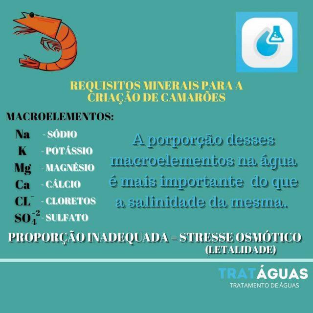 Perfil iônico para a criação de camarões